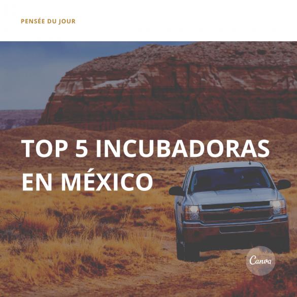 TOP 5 INCUBADORAS EN MÉXICO