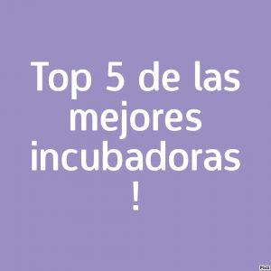 Clasificación de las incubadoras de España