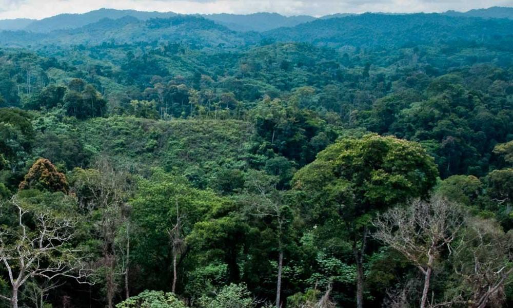 Le Congo, un gros potentiel en croissance pour les startups